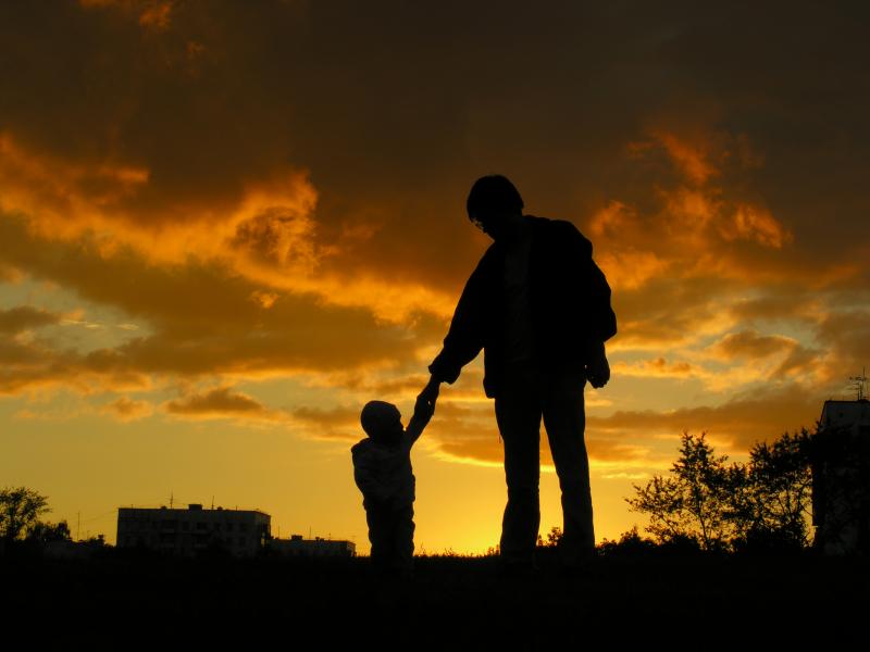 father son custody